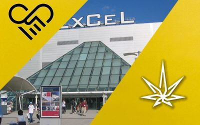 Experiencing Europe's largest CBD Expo