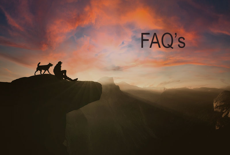 FAQ Infilife CBD